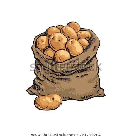 Krumpli zsák háttér zöldségek fehér friss Stock fotó © FOKA