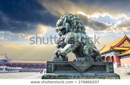 leeuw · stormachtig · hemel · wolken · mond · storm - stockfoto © sahua