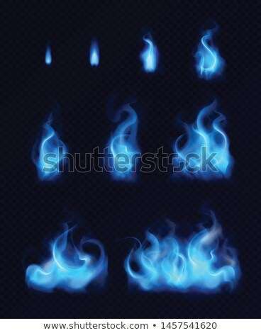 Blue flames from burner  Stock photo © sasilsolutions