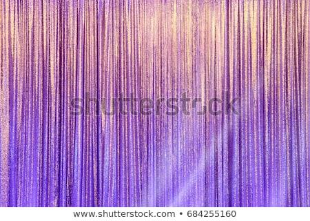 Drapes silver stock photo © zeffss