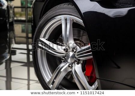 Duur zilver diamant wiel vector geïsoleerd Stockfoto © leedsn