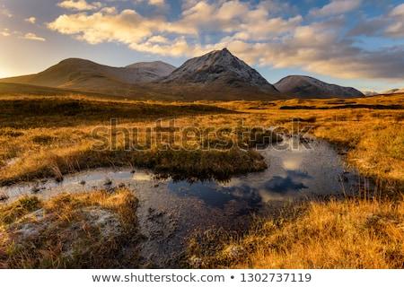 scottish Rannoch Moor Stock photo © prill