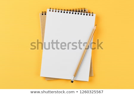 Businessman with a blank notebook Stock photo © photography33