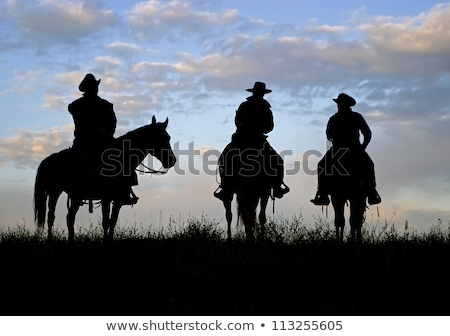 Cowboy Americana stock photo © markhayes