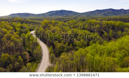 winding curve at blue ridge parkway Stock photo © alex_grichenko
