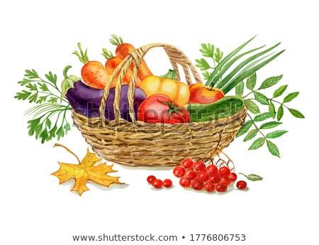 Vegetable marrow in basket Stock photo © vavlt