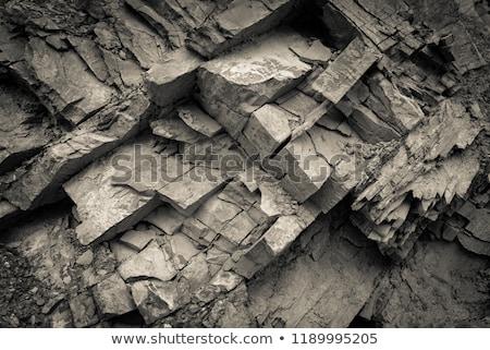 Kalksteen rock gezicht bomen bos Stockfoto © hraska