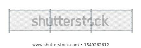 Zdjęcia stock: łańcucha · link · ogrodzenia · lesie · Błękitne · niebo