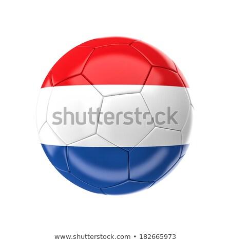 fútbol · fútbol · pelota · Brasil · bandera · 3D - foto stock © daboost