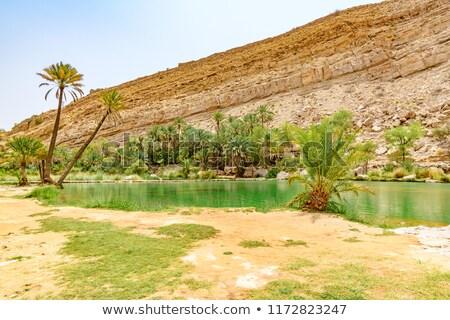 Hegyek tájkép Omán víz Stock fotó © meinzahn