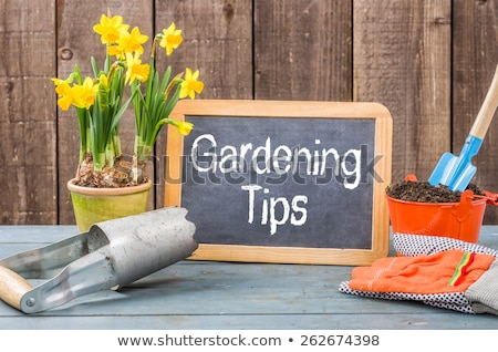 Chalkboard on a plant table with the text Gardening Tips Stock photo © Zerbor