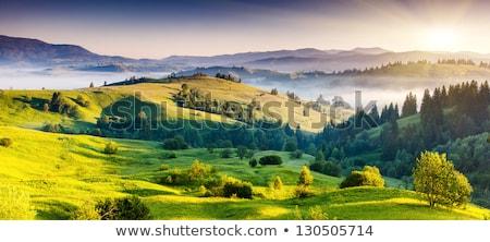 Nyár tájkép hegy utazás hegyek felhő Stock fotó © OleksandrO