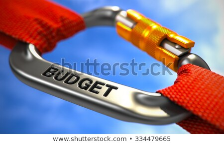 Budget on Chrome Carabine with Red Ropes. Stock photo © tashatuvango