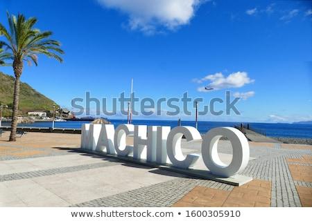 Sziget Madeira magasról fotózva tengerparti díszlet tengerpart Stock fotó © prill