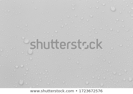 set of water drops on gray background stock photo © bluering