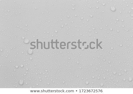 капли · воды · капли · капли · воды · воды · зеленый · синий - Сток-фото © bluering