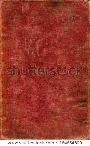 Old Red Stained Woven Fabric Book Cover Stock photo © frannyanne