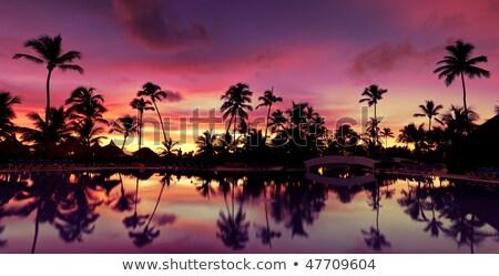 Gün batımı Haiti görüntü ada ulus güneş Stok fotoğraf © brm1949
