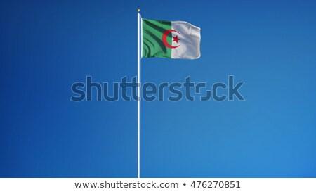 アルジェリア · フラグ · ベクトル · 画像 · テクスチャ - ストックフォト © Amplion