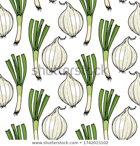 Onions seamless pattern. Bulb onion endless background, texture. Vegetable background. Vector illust Stock photo © lucia_fox
