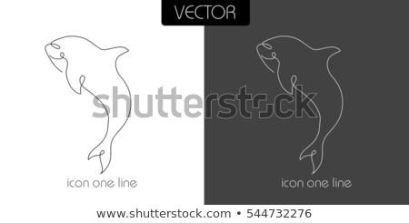 Hal cápa ikon fehér fekete egy Stock fotó © Olena