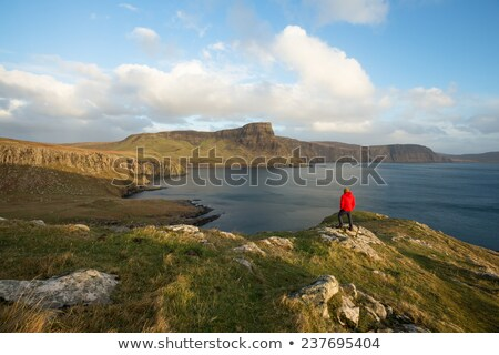 man looking at view on coastal hill Stock photo © IS2