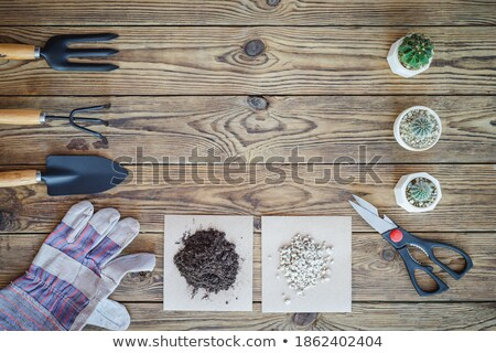 plant care utensils stock photo © erierika