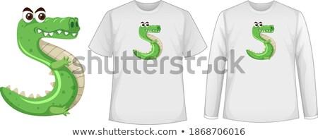 Rajz zöld krokodil szám öt illusztráció Stock fotó © colematt