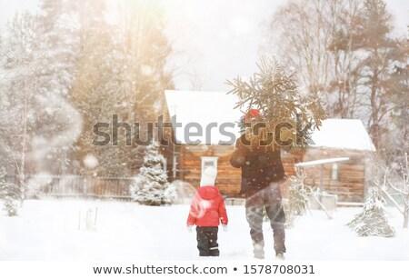 natal · preparação · menina · pinheiro · vetor · feminino - foto stock © robuart