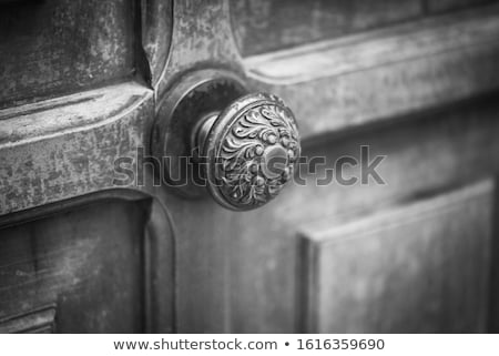 deur · oude · stad · Lissabon - stockfoto © marylooo