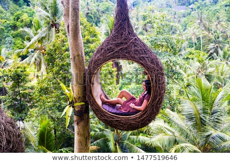 A female tourist is sitting on a large bird nest on a tree at Ba Stock photo © boggy