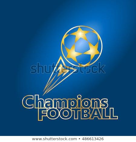 футбольным мячом огня Германия флаг иллюстрация футбола Сток-фото © doomko