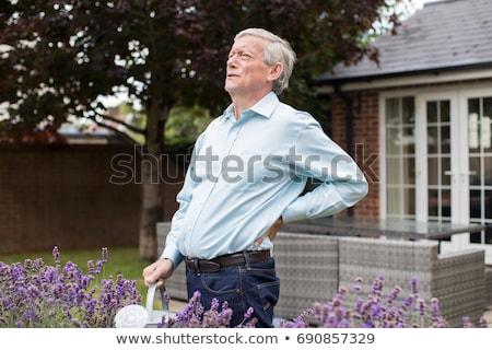 Supérieurs homme souffrance jardinage Retour Photo stock © HighwayStarz