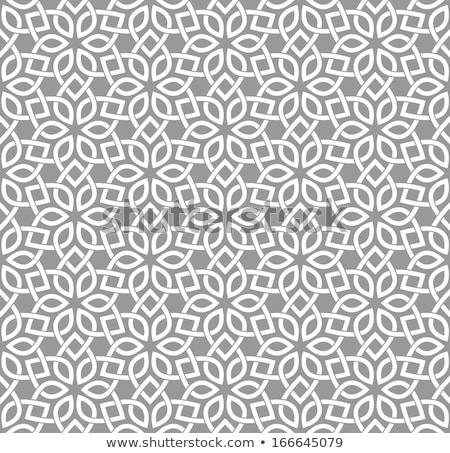 Tradycyjny arabski geometryczne orientalny dekoracyjny Zdjęcia stock © Artspace