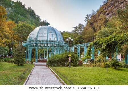 Central Georgia mineral primavera agua Foto stock © borisb17