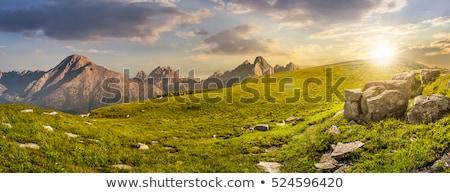 Espetacular montanha paisagem noite luz localização Foto stock © Leonidtit