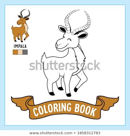 drawing and coloring worksheet with impala animal Stock photo © izakowski