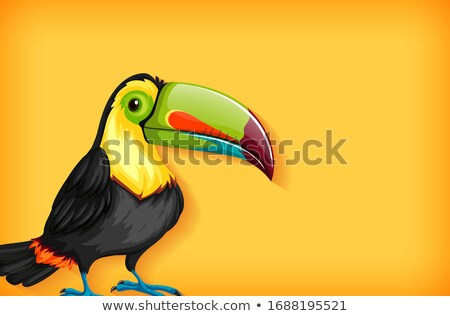 Background template with plain color and toucan bird Stock photo © bluering