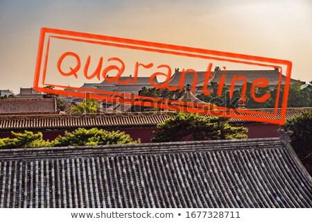 コロナウイルス 流行 古代 ロイヤル 紫禁城 空 ストックフォト © galitskaya