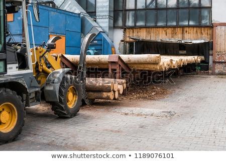 Hatalmas boglya fűrészmalom fenyőfa kész fa Stock fotó © mybaitshop