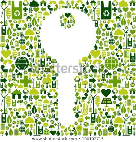 groene · eco · huis · sleutel · ecologie · iconen - stockfoto © krabata