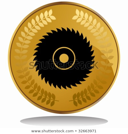 Pièce d'or vu lame image construction design Photo stock © cteconsulting