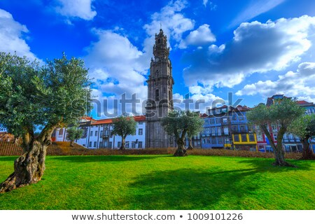 Clerigos church in Oporto with tower Stock photo © fxegs
