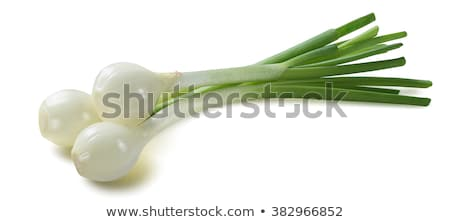 green spring onion on market stock photo © simply