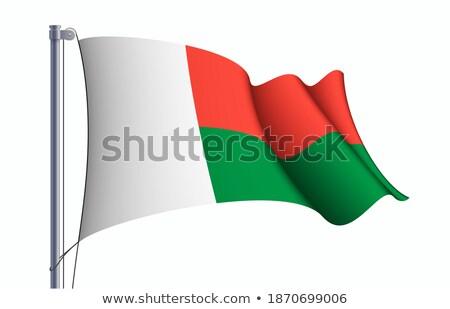 Fém ikon Madagaszkár tér zászló színek Stock fotó © dvarg