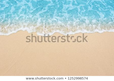 Sabbia spiaggia mare schiuma onda acqua Foto d'archivio © nessokv
