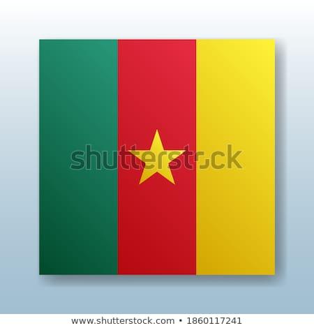 кнопки символ Камерун флаг карта белый Сток-фото © mayboro1964