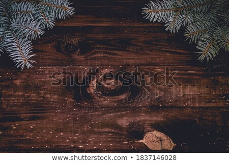 beautiful texture of old spruce plank stock photo © taviphoto