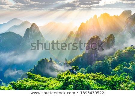 山 中国 ツリー 自然 世界 背景 ストックフォト © fatalsweets