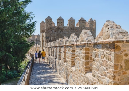 Avila Turrets Castle Walls Cityscape Castile Spain Stock photo © billperry